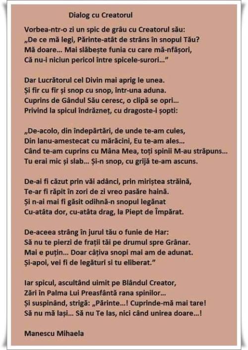 poezie-spicul